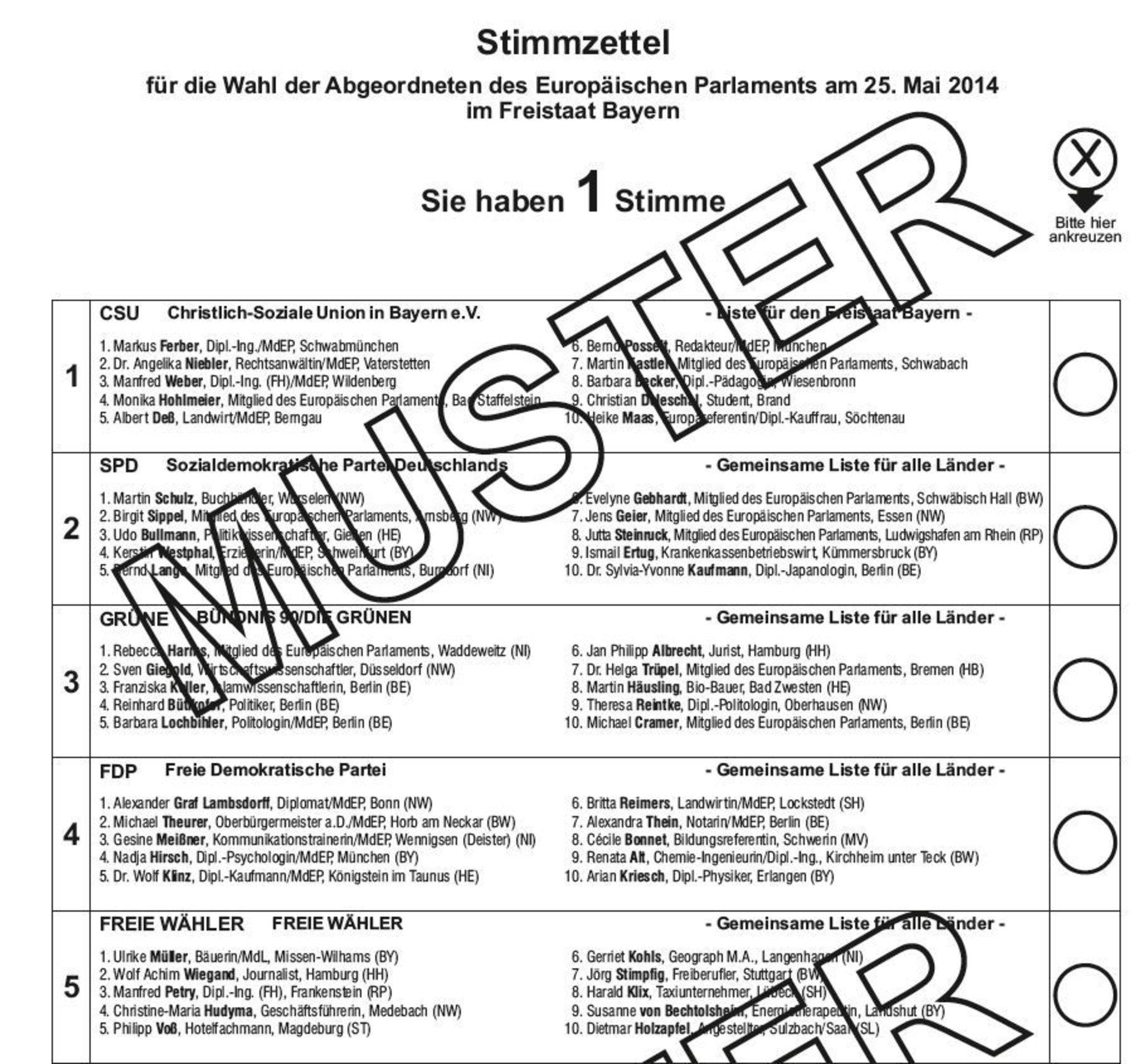 Europawahl 2014 Wie Wahle Ich Richtig Nurnberg